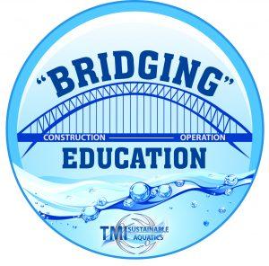TMI-Bridging-Logo_Final