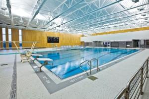 Buying Pool Equipment Online